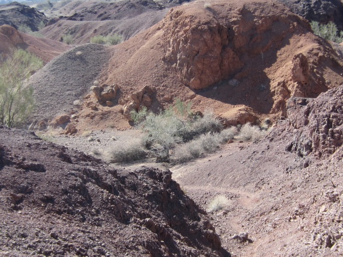More Landscape Views