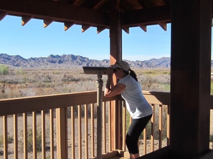 Kathie Observing