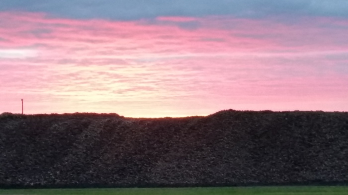 Sunset behind pile 1